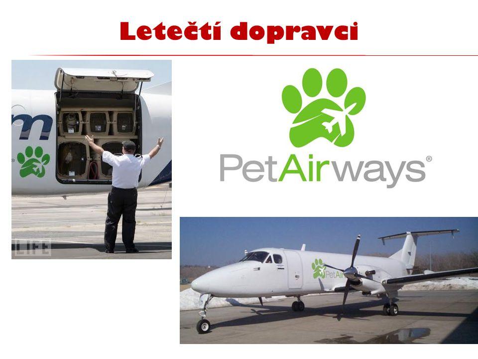 Letečtí dopravci