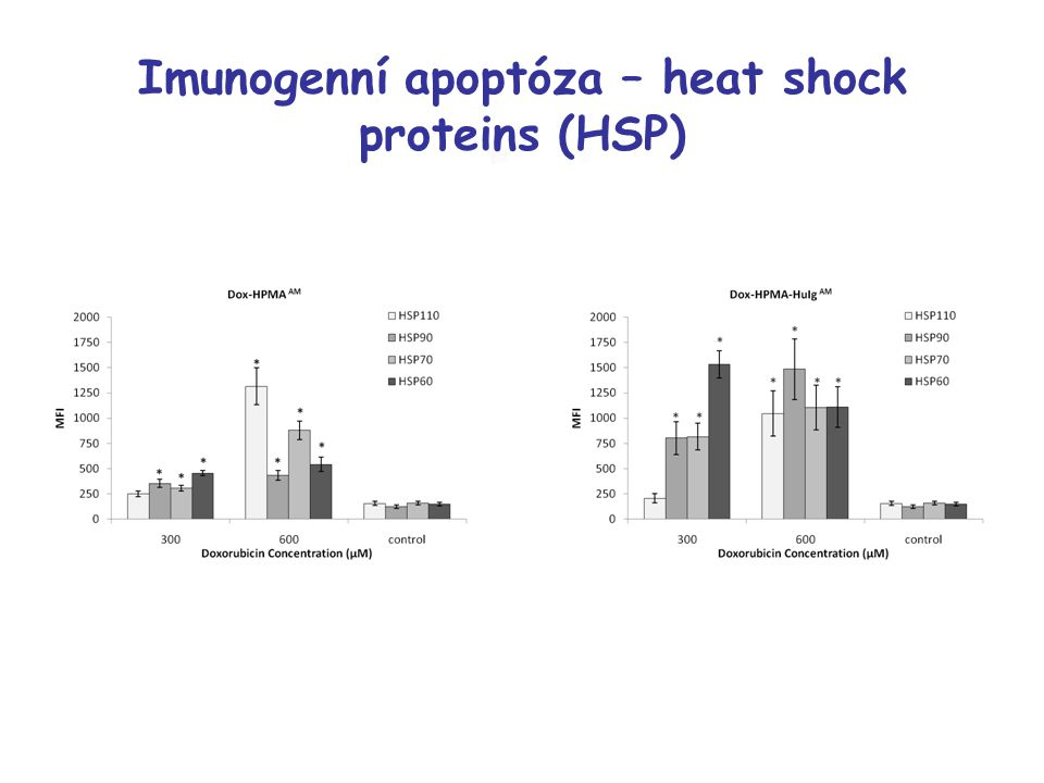 Imunogenní apoptóza – heat shock proteins (HSP)
