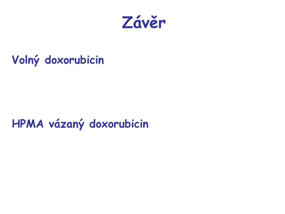 Závěr Volný doxorubicin HPMA vázaný doxorubicin 9 33