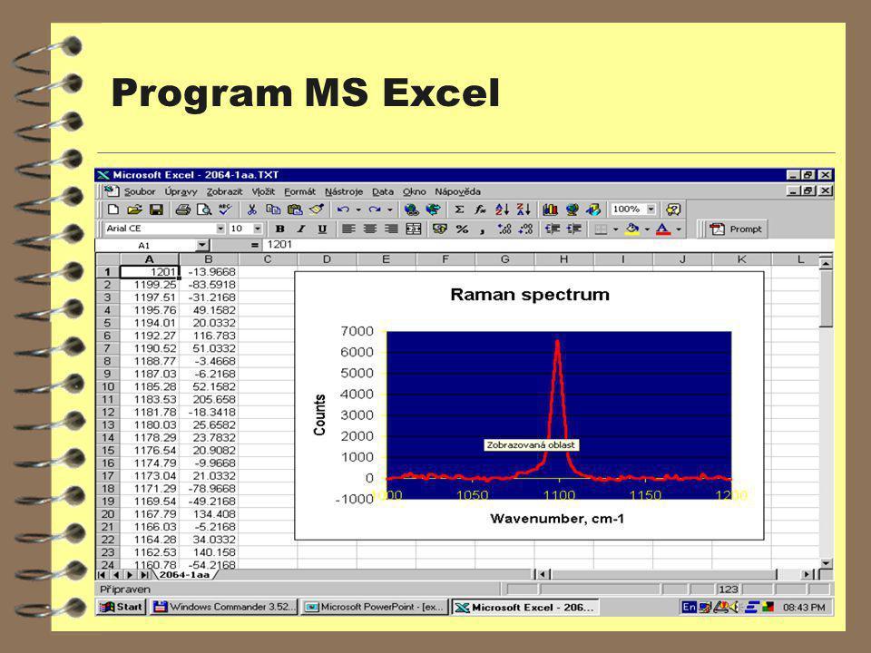 Program MS Excel