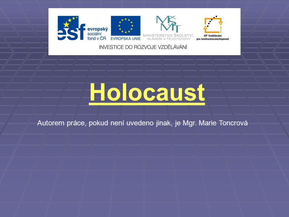 Holocaust Autorem práce, pokud není uvedeno jinak, je Mgr. Marie Toncrová 1
