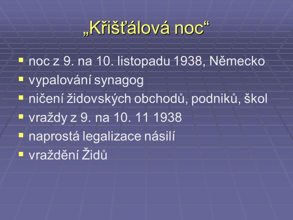 """""""Křišťálová noc noc z 9. na 10. listopadu 1938, Německo"""