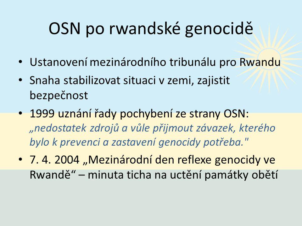 OSN po rwandské genocidě