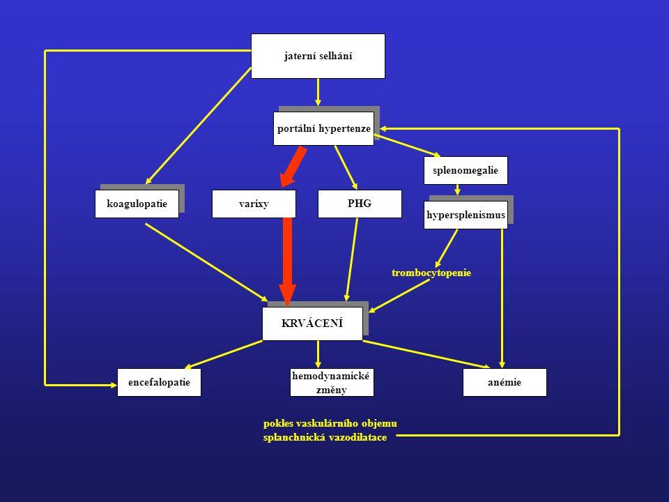 jaterní selhání portální hypertenze. splenomegalie. koagulopatie. varixy. PHG. hypersplenismus.