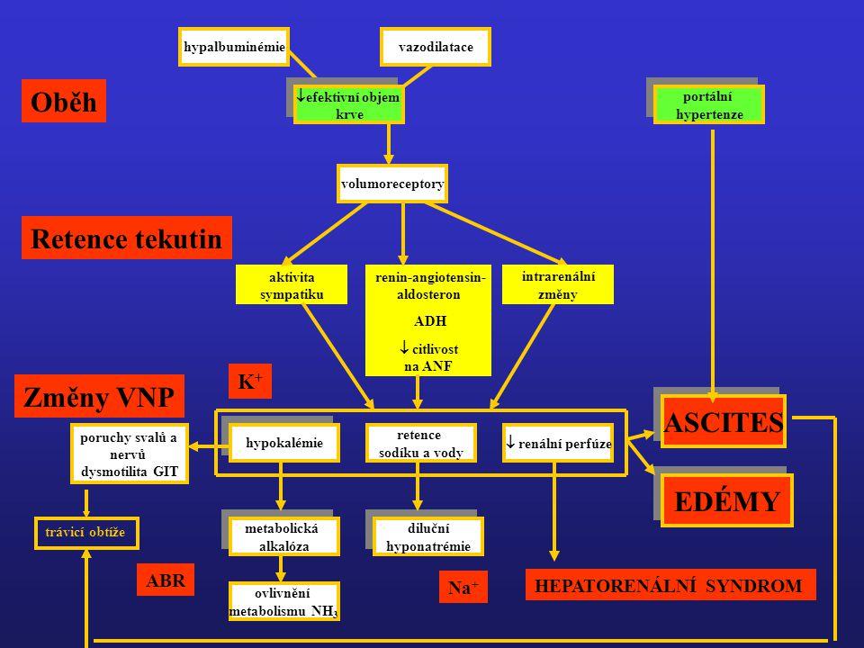 Oběh Retence tekutin Změny VNP ASCITES EDÉMY K+ ABR Na+