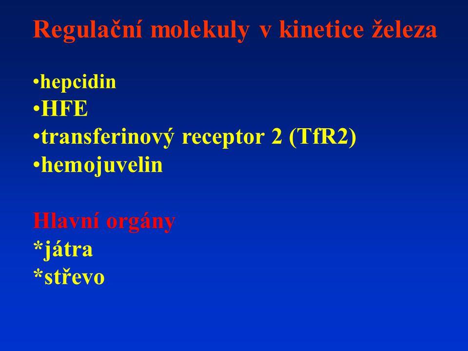 Regulační molekuly v kinetice železa