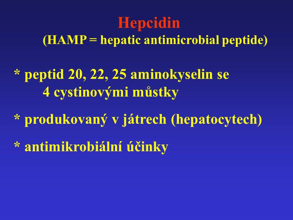 Hepcidin * peptid 20, 22, 25 aminokyselin se 4 cystinovými můstky