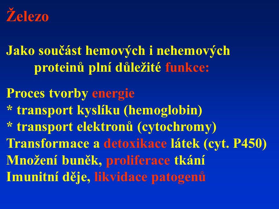 Železo Jako součást hemových i nehemových proteinů plní důležité funkce: Proces tvorby energie. * transport kyslíku (hemoglobin)