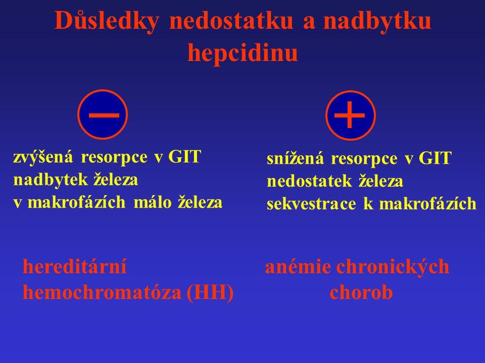 Důsledky nedostatku a nadbytku hepcidinu