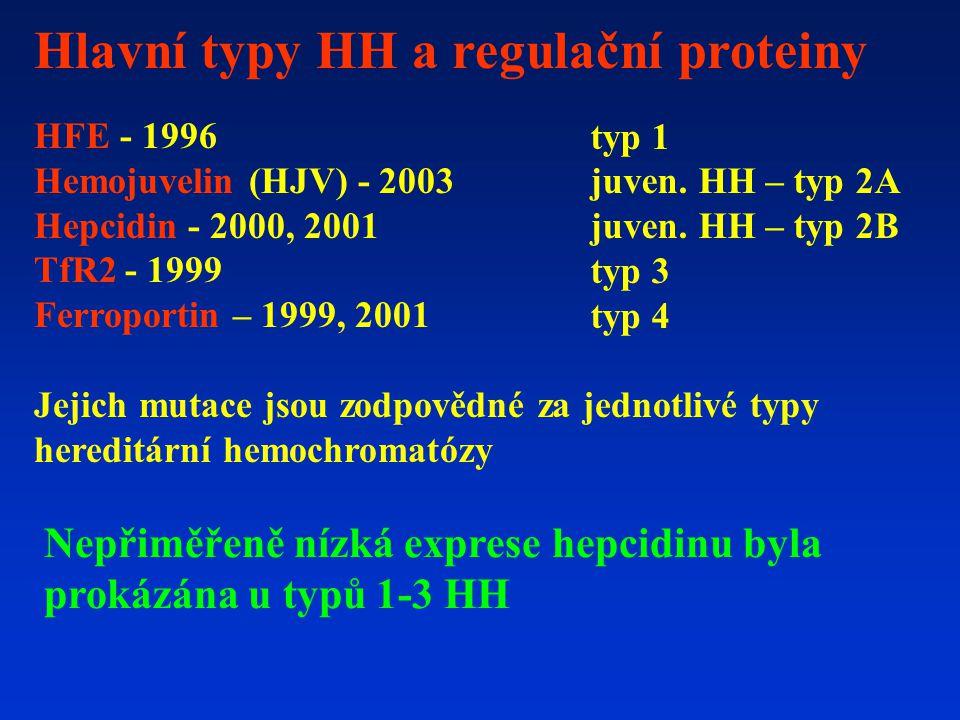 Hlavní typy HH a regulační proteiny