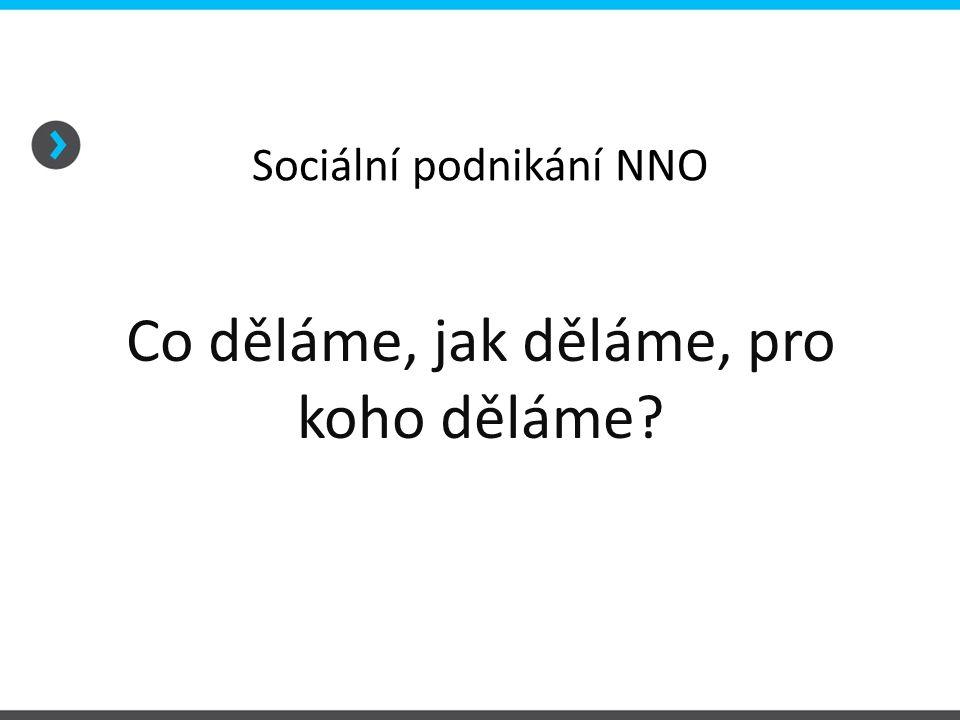 Sociální podnikání NNO