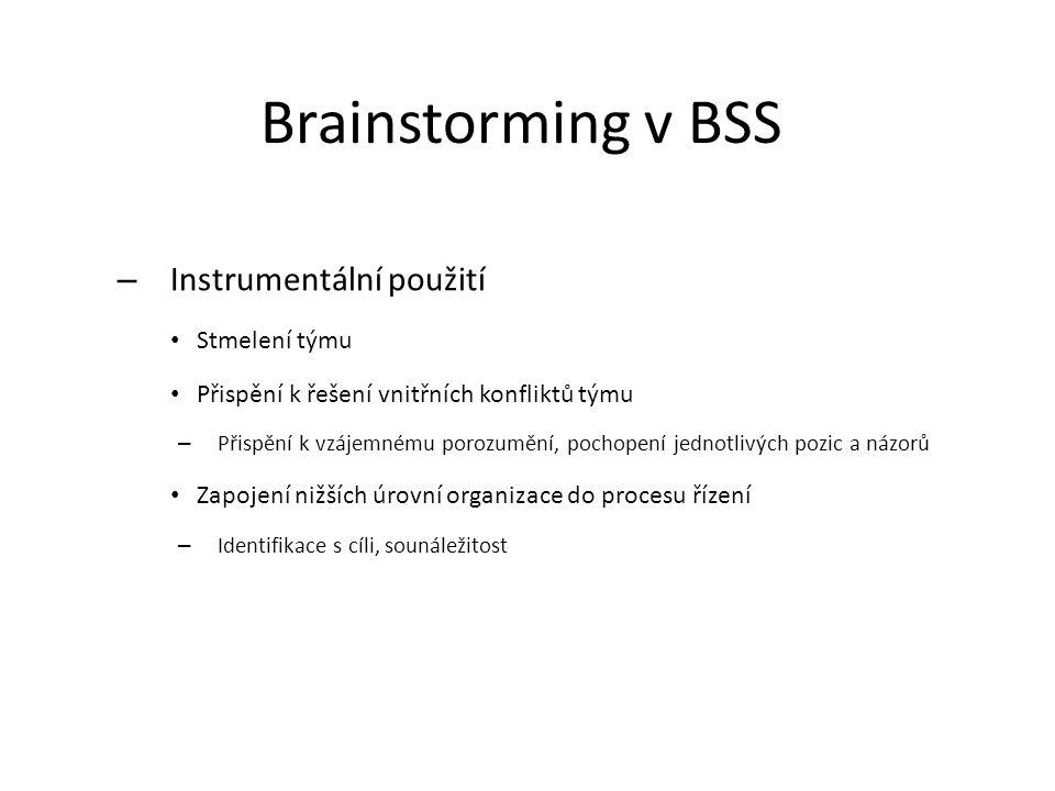 Brainstorming v BSS Instrumentální použití Stmelení týmu