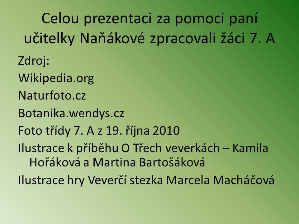 Celou prezentaci za pomoci paní učitelky Naňákové zpracovali žáci 7. A