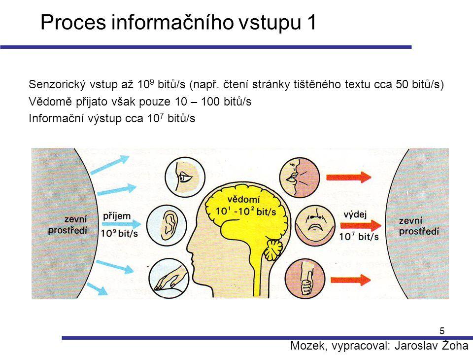 Proces informačního vstupu 1