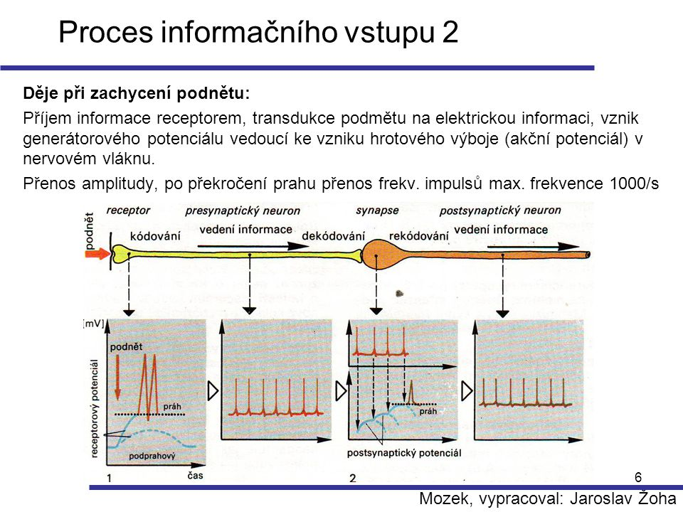Proces informačního vstupu 2