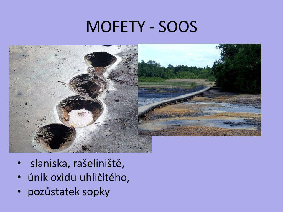 MOFETY - SOOS slaniska, rašeliniště, únik oxidu uhličitého,