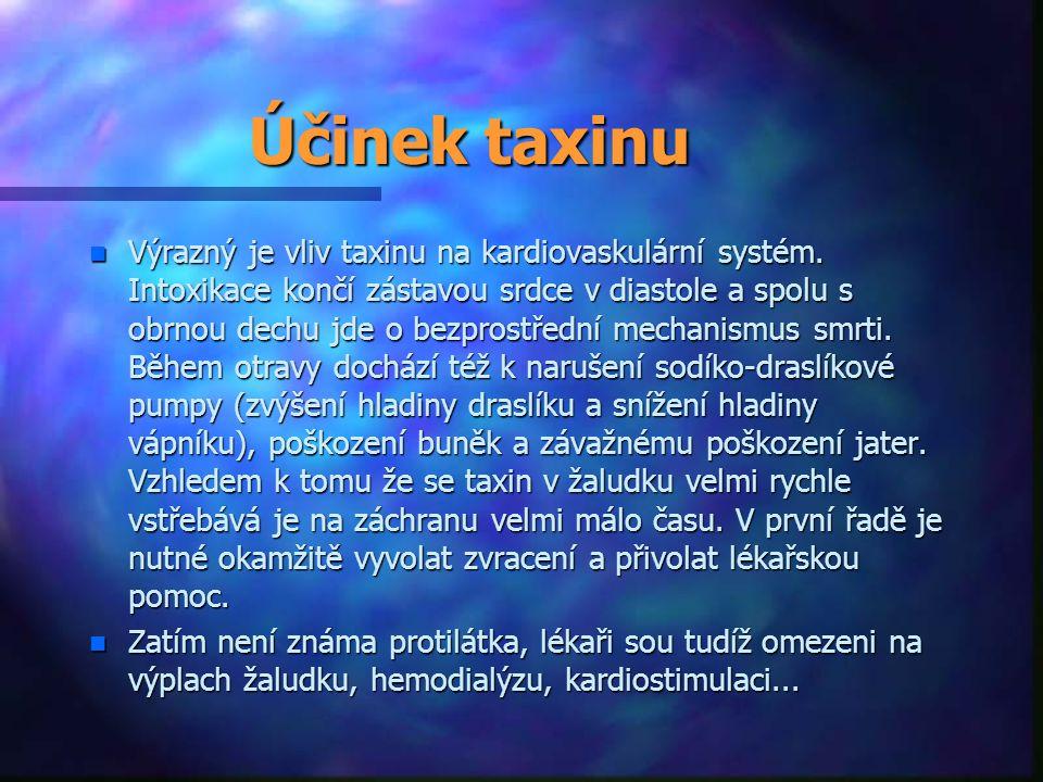Účinek taxinu