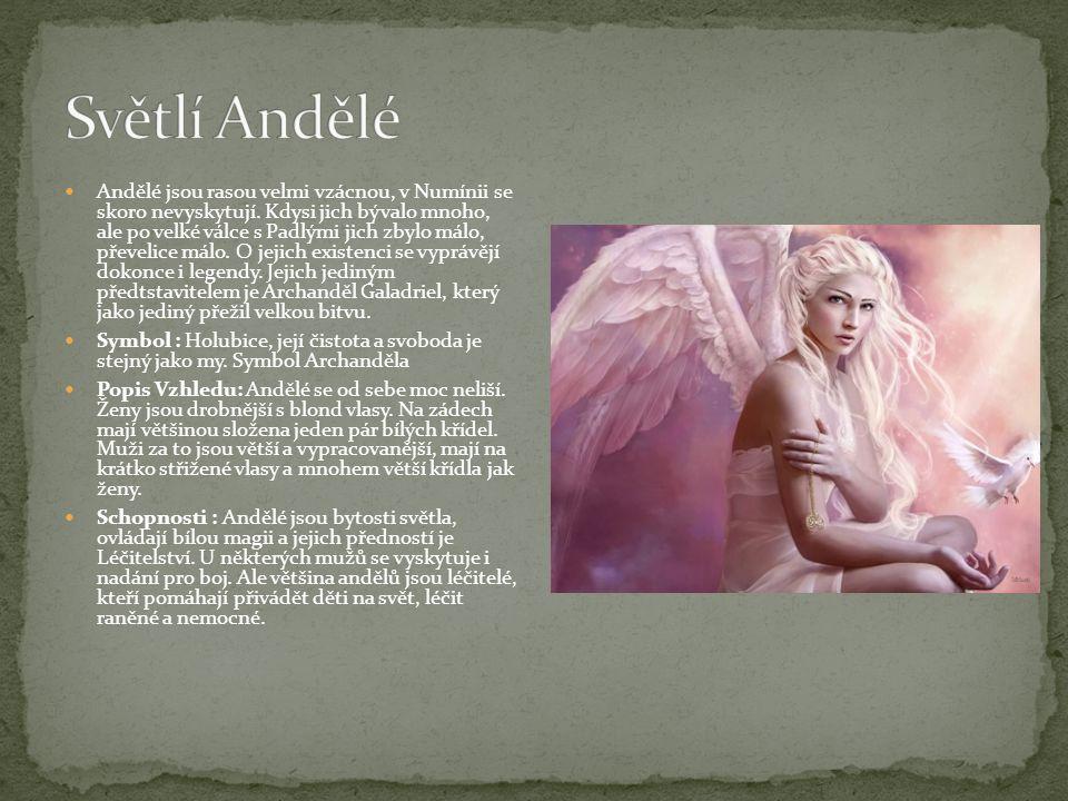 Světlí Andělé