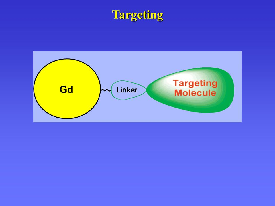 Targeting Gd