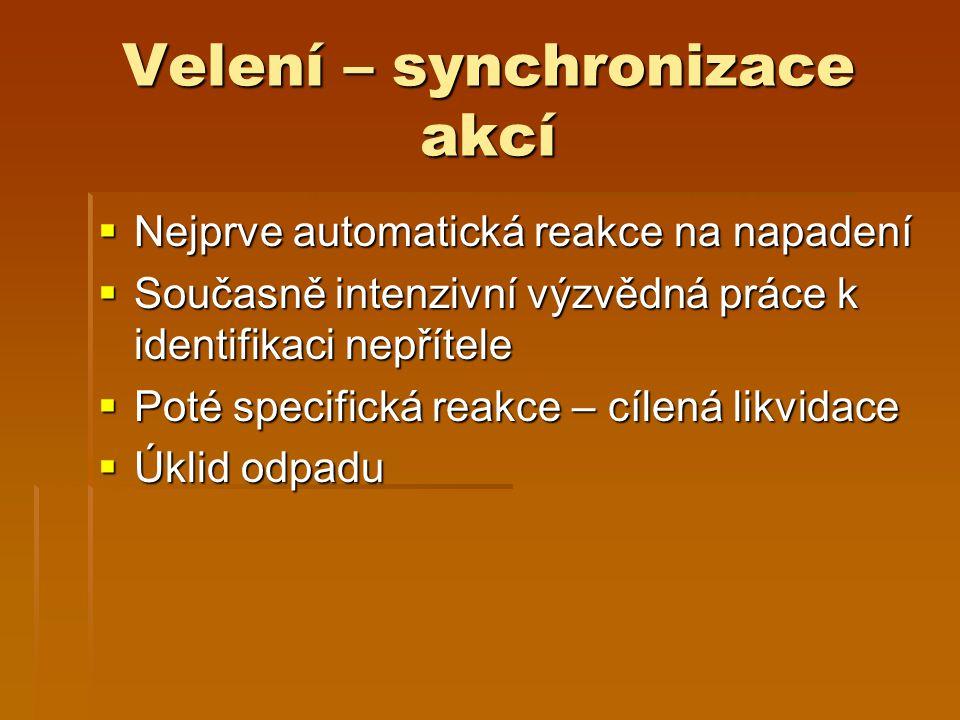 Velení – synchronizace akcí