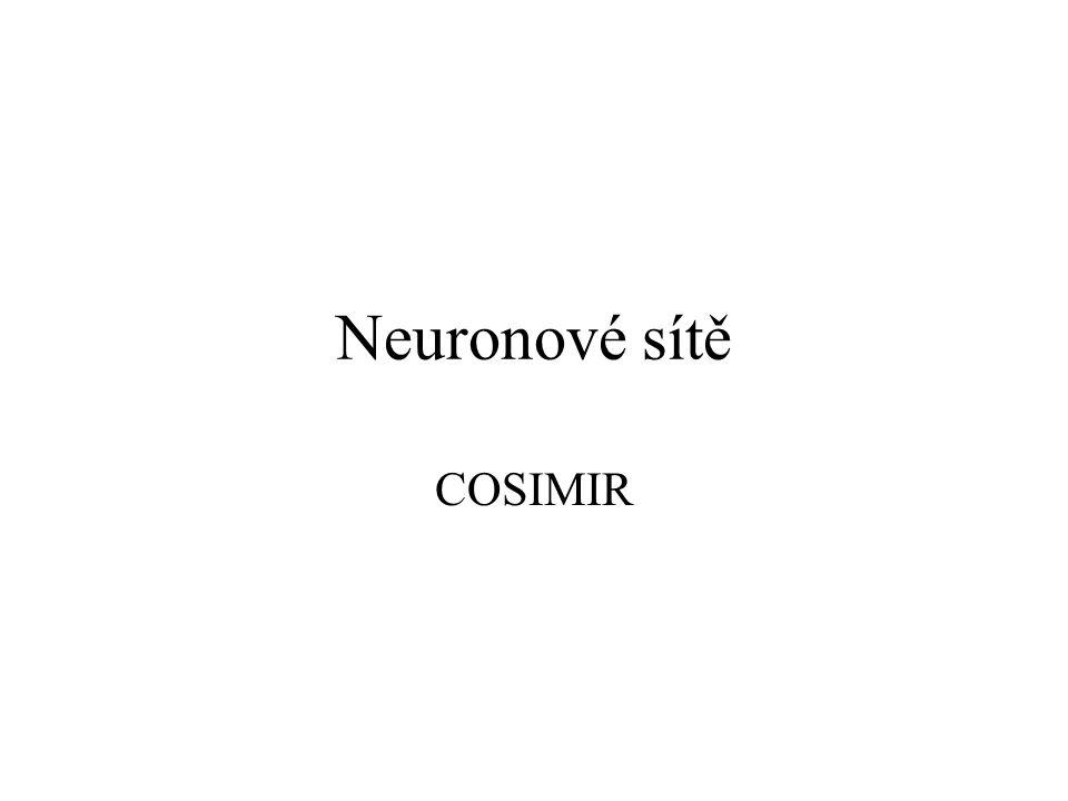 Neuronové sítě COSIMIR 456