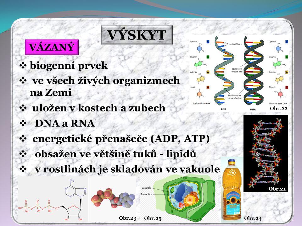 VÝSKYT VÁZANÝ biogenní prvek ve všech živých organizmech na Zemi