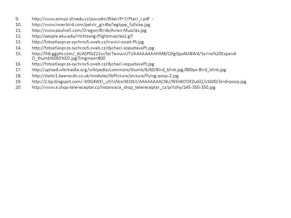 http://www.zsmysl.zlinedu.cz/puvodni/Biker/Pr7/Ptaci_I.pdf -
