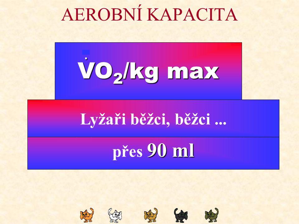 VO2/kg max AEROBNÍ KAPACITA . Lyžaři běžci, běžci ... Kdo
