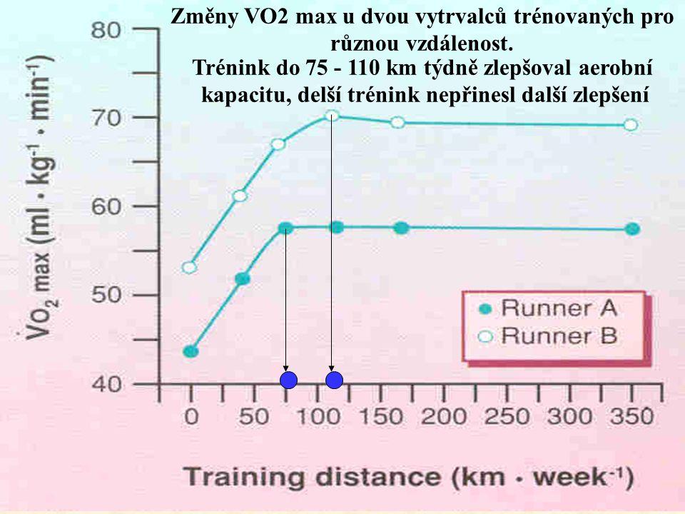 Změny VO2 max u dvou vytrvalců trénovaných pro různou vzdálenost.