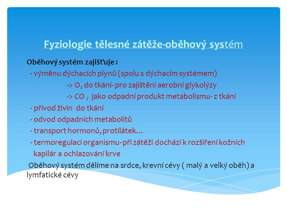 Fyziologie tělesné zátěže-oběhový systém