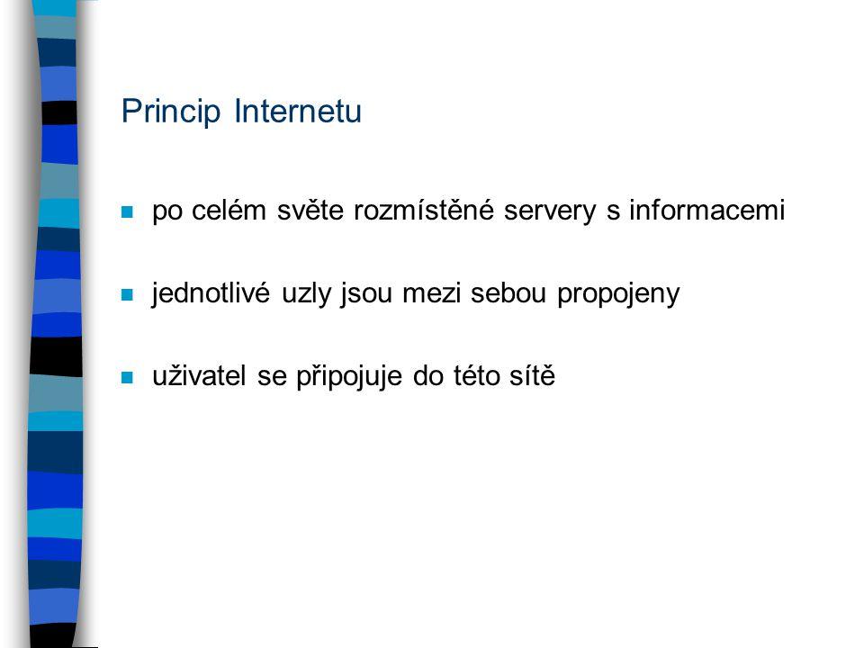 Princip Internetu po celém světe rozmístěné servery s informacemi