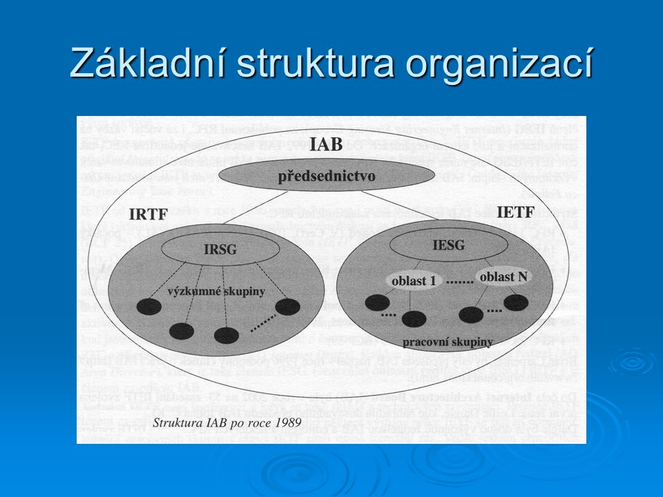 Základní struktura organizací