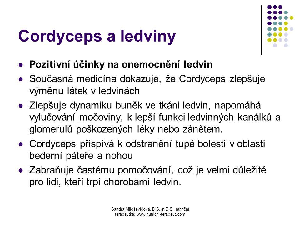 Cordyceps a ledviny Pozitivní účinky na onemocnění ledvin