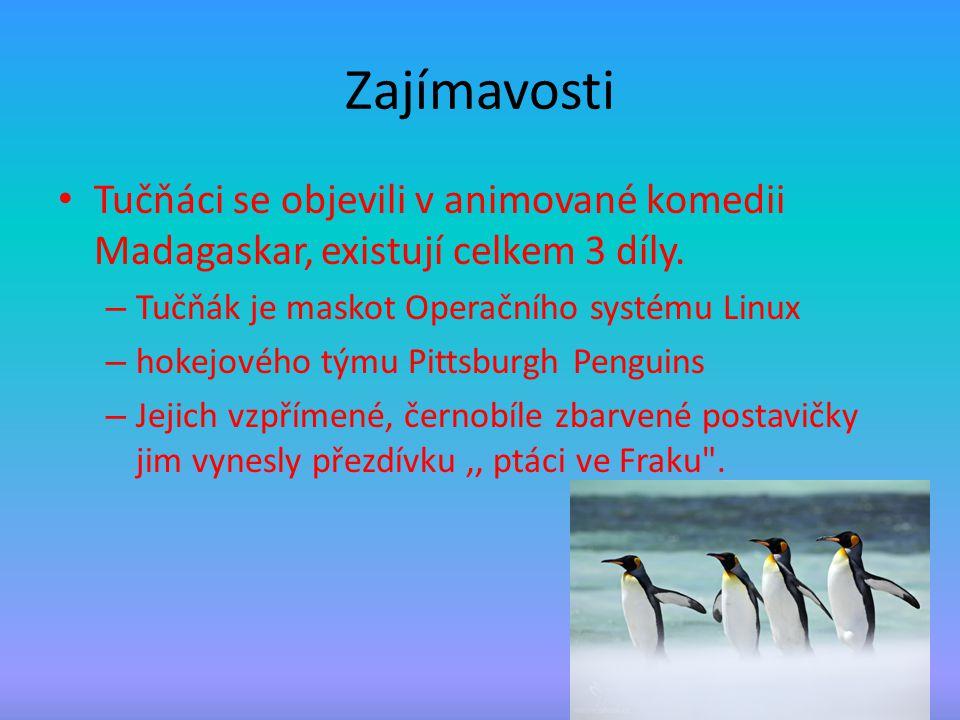 Zajímavosti Tučňáci se objevili v animované komedii Madagaskar, existují celkem 3 díly. Tučňák je maskot Operačního systému Linux.