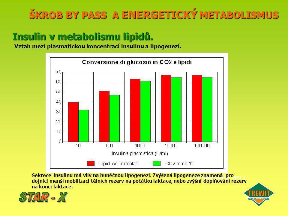 ŠKROB BY PASS A ENERGETICKÝ METABOLISMUS