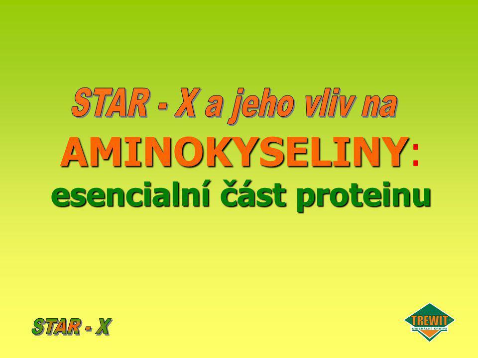 AMINOKYSELINY: esencialní část proteinu
