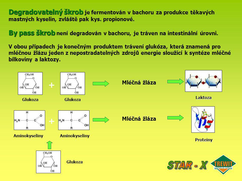 Degradovatelný škrob je fermentován v bachoru za produkce těkavých mastných kyselin, zvláště pak kys. propionové.