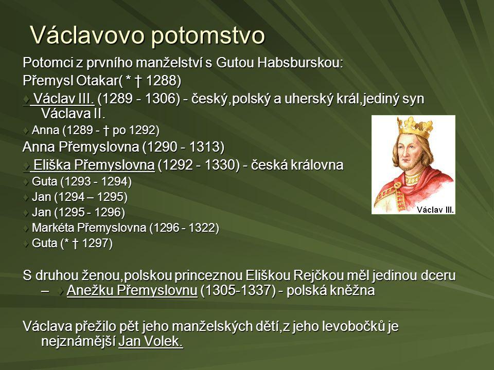 Václavovo potomstvo Potomci z prvního manželství s Gutou Habsburskou: