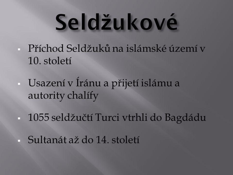 Seldžukové Příchod Seldžuků na islámské území v 10. století