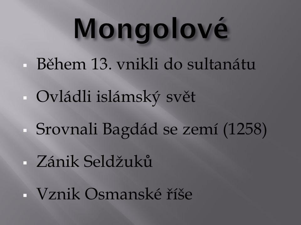 Mongolové Během 13. vnikli do sultanátu Ovládli islámský svět