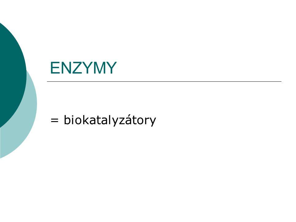ENZYMY = biokatalyzátory