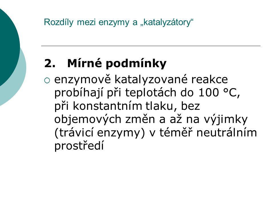 "Rozdíly mezi enzymy a ""katalyzátory"