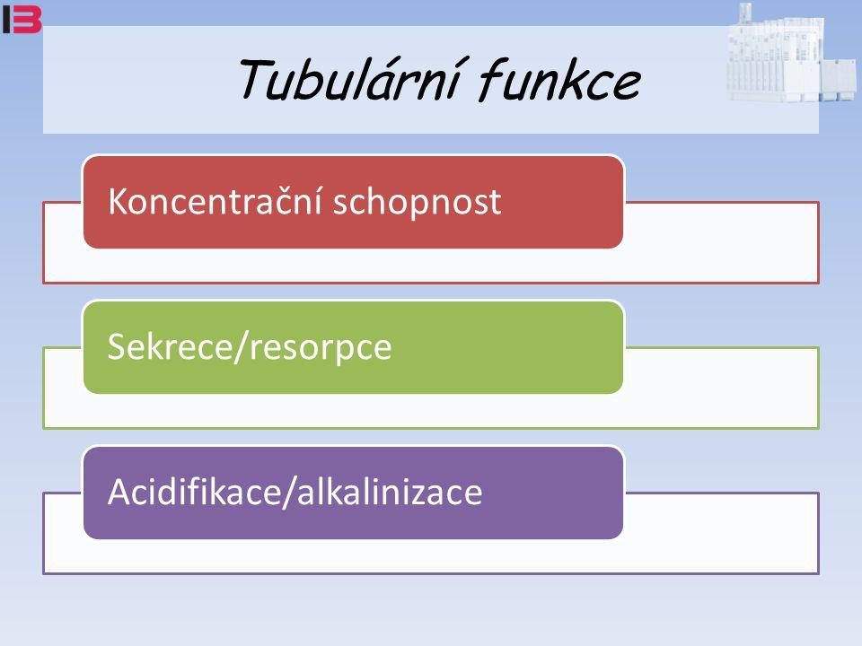 Tubulární funkce Koncentrační schopnost Sekrece/resorpce