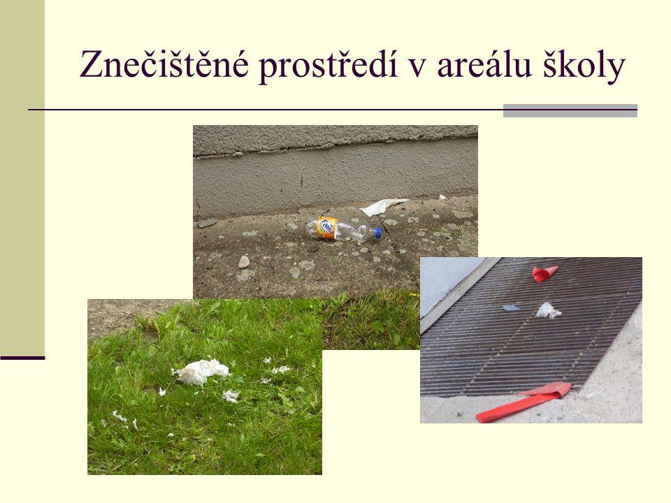 Znečištěné prostředí v areálu školy