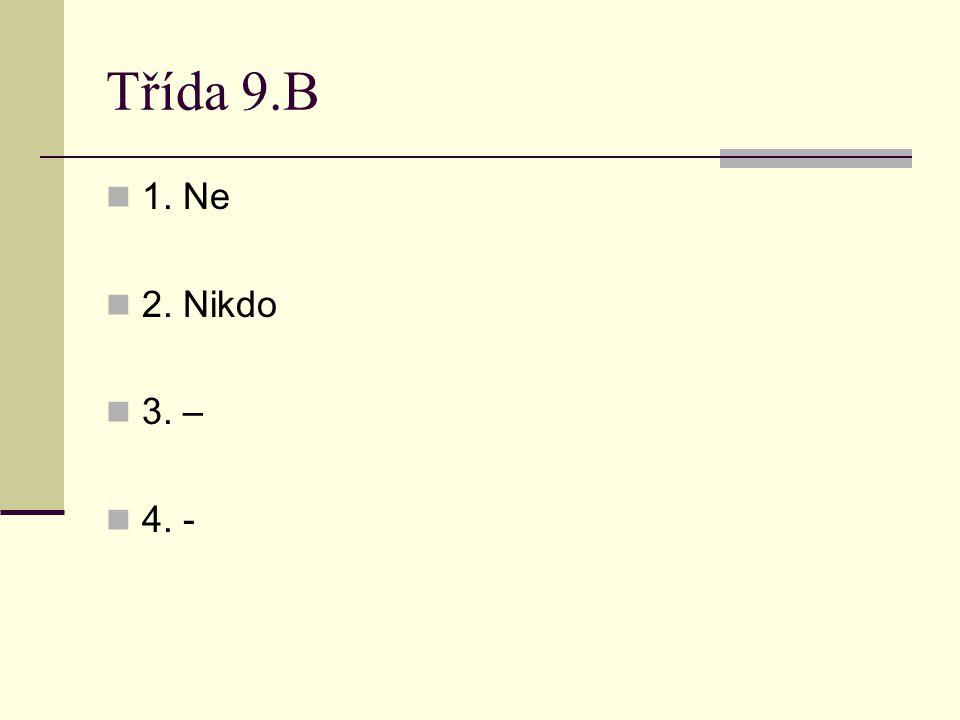 Třída 9.B 1. Ne 2. Nikdo 3. – 4. - Audit