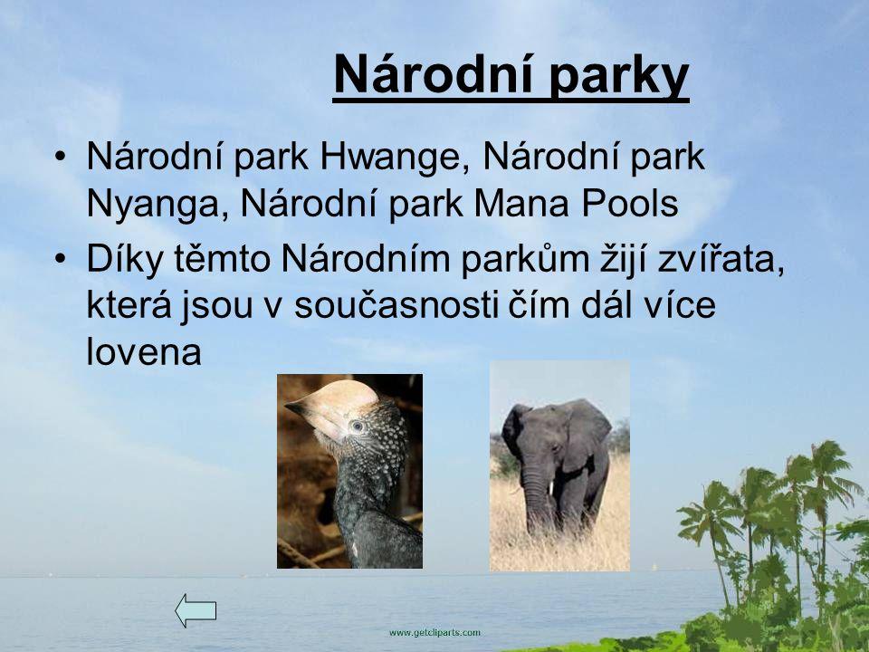 Národní parky Národní park Hwange, Národní park Nyanga, Národní park Mana Pools.