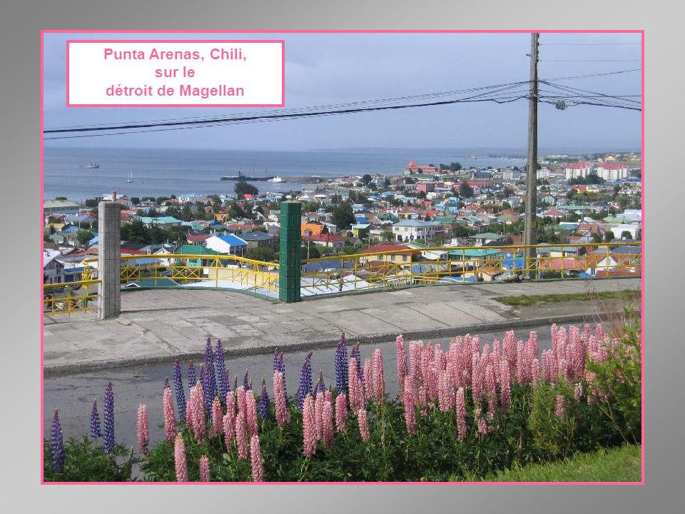 Punta Arenas, Chile, na Strait Magellan