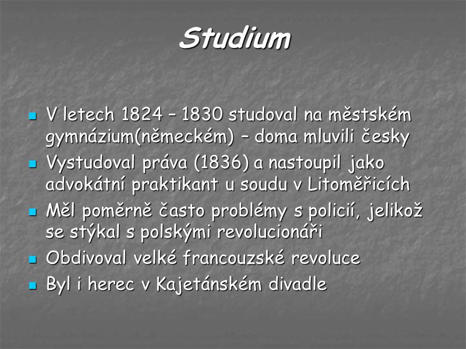 Studium V letech 1824 – 1830 studoval na městském gymnázium(německém) – doma mluvili česky.