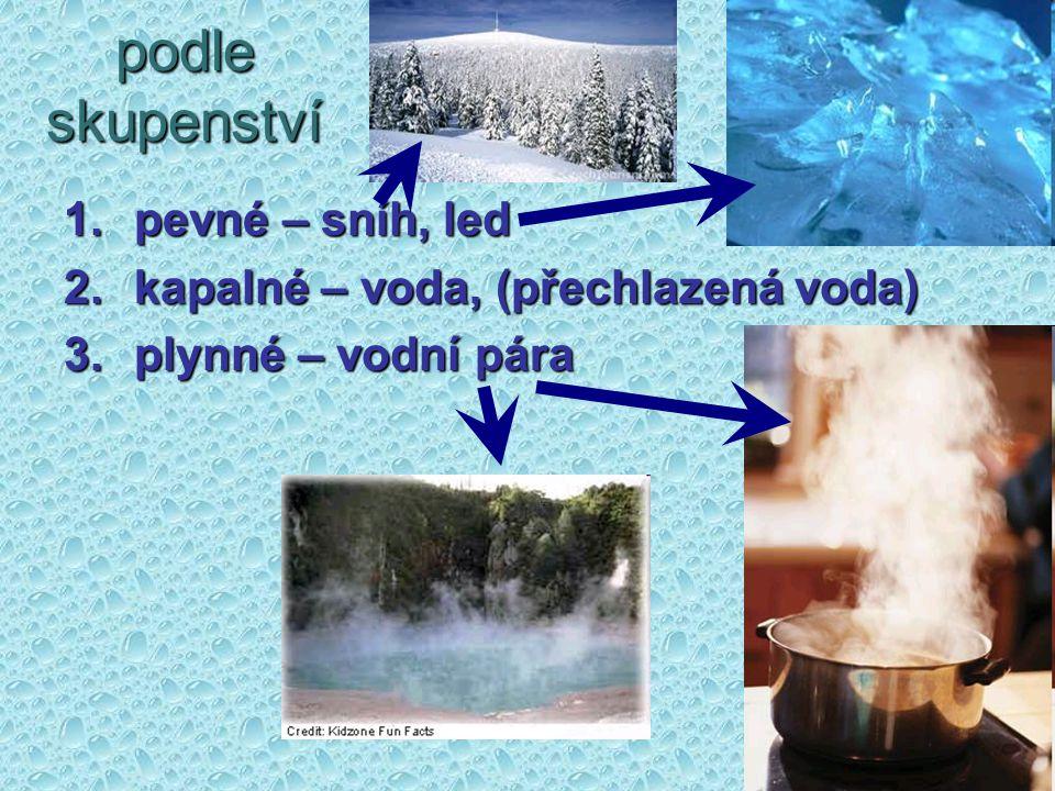 podle skupenství pevné – sníh, led kapalné – voda, (přechlazená voda)