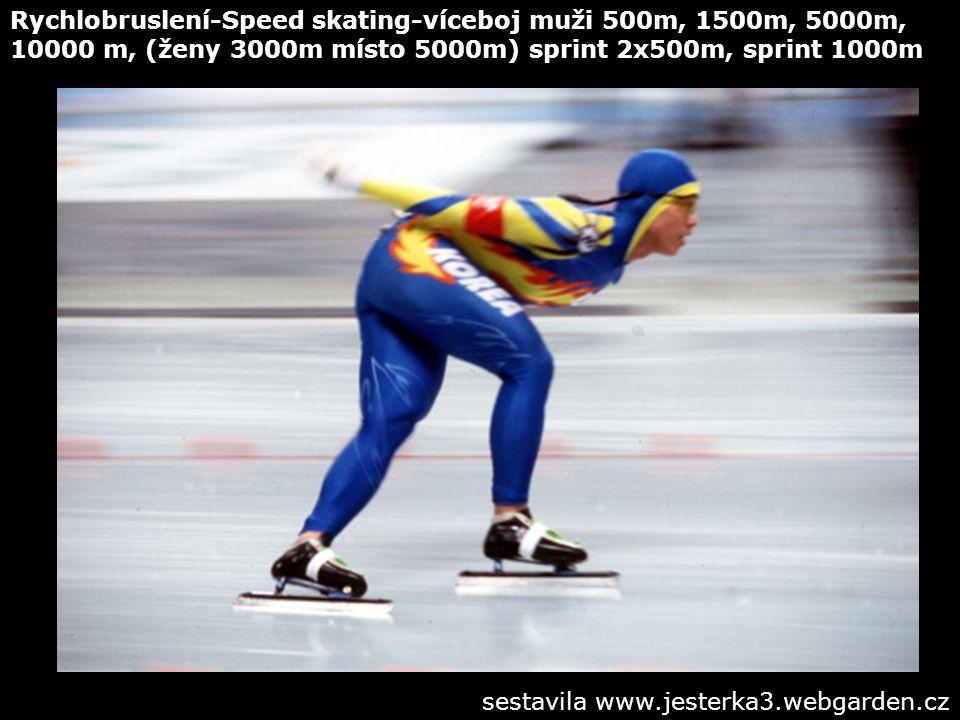 Rychlobruslení-Speed skating-víceboj muži 500m, 1500m, 5000m, 10000 m, (ženy 3000m místo 5000m) sprint 2x500m, sprint 1000m